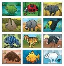 Keverj kedvedre zoo belül
