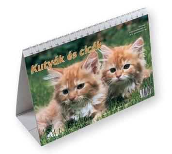 Kutyák és cicák diák asztali naptár