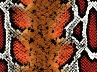 kígyó mintázatú műbőr piros