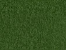 DOLLARO zöld műbőr        140 cm széles