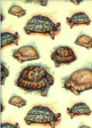 akciós dekupázs papír Tassotti teknős