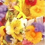 akciós szalvéta virágos szalvéták virágcsokor