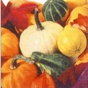 akciós szalvéta zöldségek, termések sorozat tökkiállítás