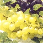 akciós szalvéta gyümölcsök sorozat szőlőszemek