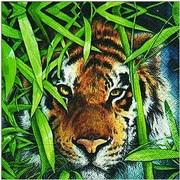 szalvéta állatmintás sorozat tigris
