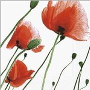 szalvéta virágos szalvéták pipacsok
