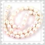 tenyésztett gyöngy fehér, 7 - 8 mm
