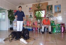 Állatkórházi váró