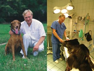 Dr. Juhász Tamás állatorvos