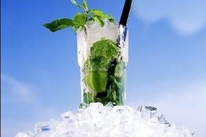 bacardi rum - bacardi mojito