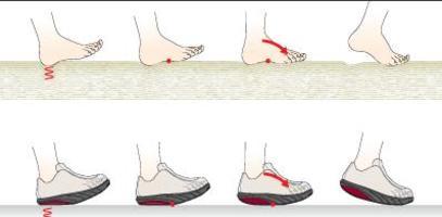 fiziológiás cipő