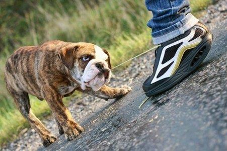 gördülő cipő