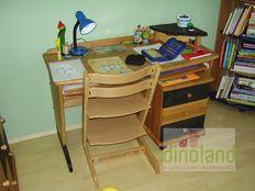 egyedi íróasztal