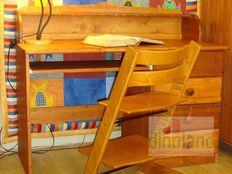 ifjúsági íróasztal Nóra
