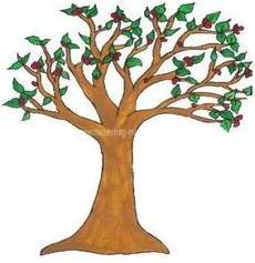 Magánovoda fája