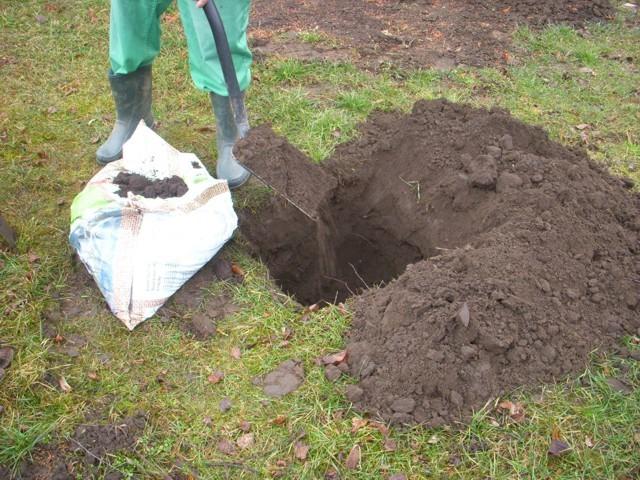 szerves trágya talajjavításra
