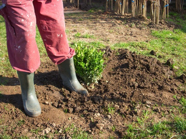 talaj tömörítése