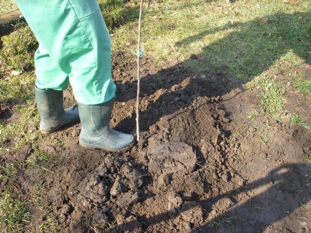 talaj tömörítése, légmentesítés